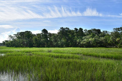 830 Distant Island, Beaufort, SC, 29907, Ladys Island Home For Sale