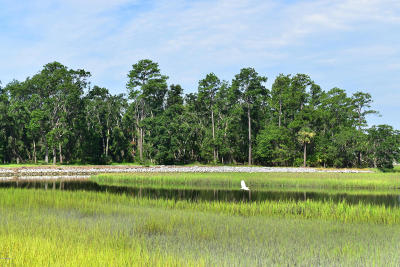 840 Distant Island, Beaufort, SC, 29907, Ladys Island Home For Sale