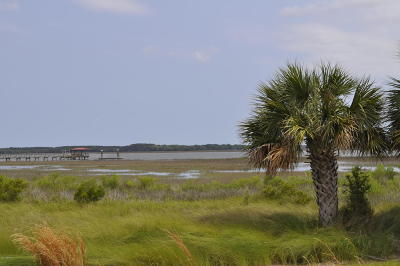 Beaufort Residential Lots & Land For Sale: 14 Sweet Grass Drive