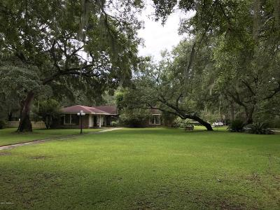 Beaufort County Single Family Home For Sale: 36 Varsity Street