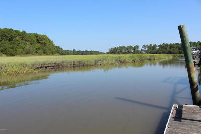 Beaufort County Residential Lots & Land For Sale: 204 Green Winged Teal Drive S