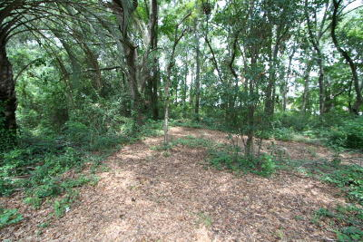 Beaufort, Beaufort Sc, Beaufot, Beufort Residential Lots & Land For Sale: 1170 Ribaut Road