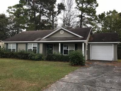 Beaufort Single Family Home For Sale: 30 Pelican Circle