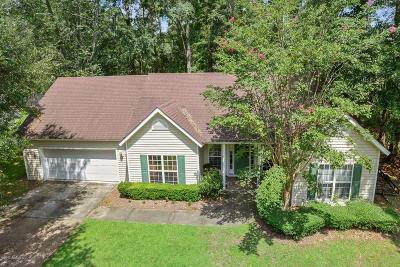 Oaktie, Okaite, Okatie Single Family Home For Sale: 14 Chechessee Bluff Circle