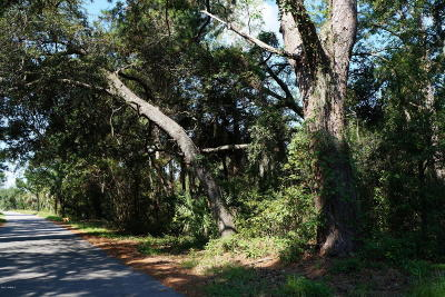 St Healena, St Helena, St Helena Is, St Helena Isl, St Helena Island, St. Helena, St. Helena Isalnd, St. Helena Island, St. Helens Residential Lots & Land For Sale: 293 Fripp Point Road