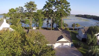 Beaufort Single Family Home For Sale: 1141 Otter Circle