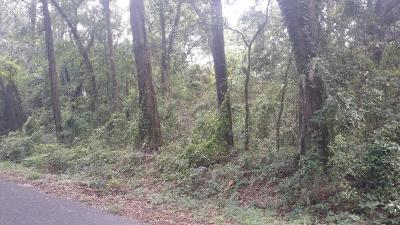 Port Royal Residential Lots & Land For Sale: 132 Johnny Morrall
