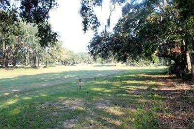 Beaufort, Beaufort Sc, Beaufot, Beufort Residential Lots & Land For Sale: 51 Ladys Walk