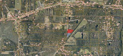 Beaufort Residential Lots & Land For Sale: 79-101 Ball Park Road
