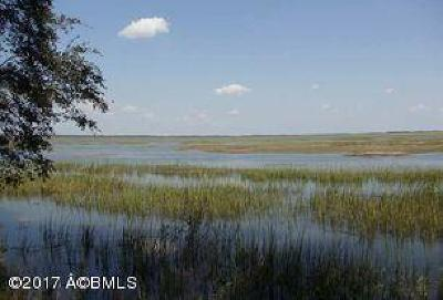 Lady's, Lady's Island, Lady'sisland, Ladys Island Residential Lots & Land For Sale: 208 Black Skimmer Court