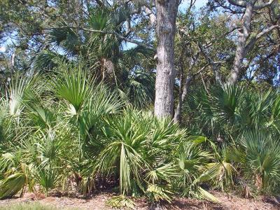 Fripp Island Residential Lots & Land Under Contract - Take Backup: 365 Blue Gill Rd