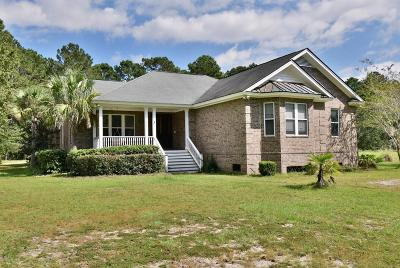 Beaufort County Single Family Home For Sale: 201 Green Winged Teal Drive S