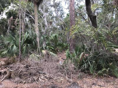 Fripp Island Residential Lots & Land For Sale: 132 Sand Piper Run