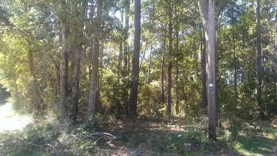Beaufort, Beaufort Sc, Beaufot, Beufort Residential Lots & Land For Sale: 14 Warren Lane