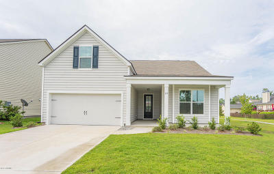 Beaufort Single Family Home For Sale: 22 Congaree Way