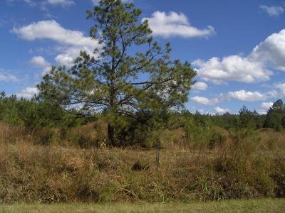 Ridgeland Residential Lots & Land For Sale: 3100 Cal Pen Bay Road