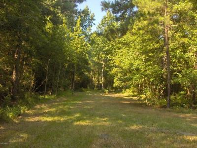 Ridgeland Residential Lots & Land Under Contract - Take Backup: Preschool Road