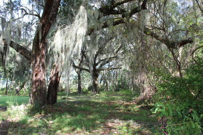 St Healena, St Helena, St Helena Is, St Helena Isl, St Helena Island, St. Helena, St. Helena Isalnd, St. Helena Island, St. Helens Residential Lots & Land For Sale: 165 Dr Martin Luther King Jr Drive