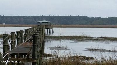 Beaufort County Residential Lots & Land For Sale: 16 Governor Blake Drive