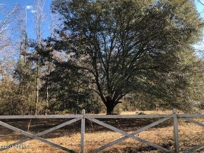 Beaufort, Beaufort Sc, Beaufot, Beufort Residential Lots & Land For Sale: 274 Bruce K Smalls Drive