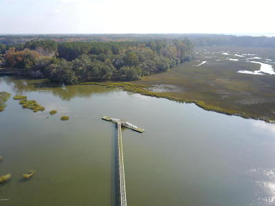 Seabrook Residential Lots & Land For Sale: 210 Bull Point Drive