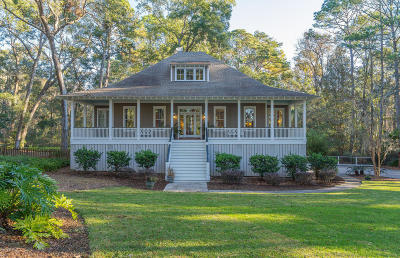 Beaufort County Single Family Home For Sale: 239 Green Winged Teal Drive S