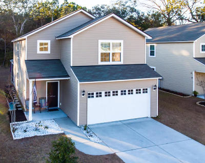Beaufort Single Family Home Under Contract - Take Backup: 28 Brasstown Way