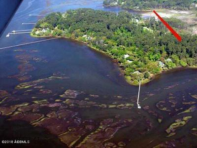 Callawassie Island Residential Lots & Land For Sale: 110 Winding Oak Drive