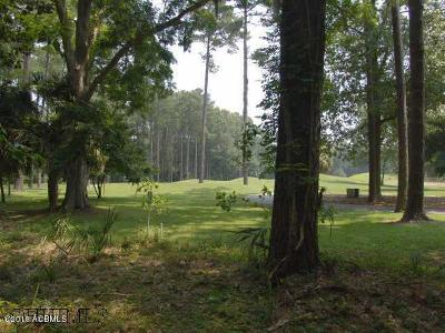 Okatie Residential Lots & Land For Sale: 61 Winding Oak Drive