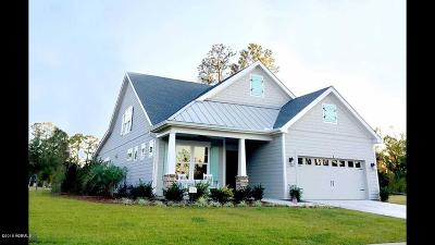 Beaufort County Single Family Home For Sale: 212 Locust Fence Road Road