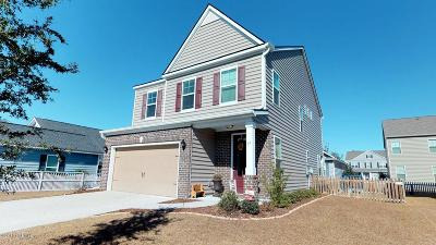 Beaufort County Single Family Home Under Contract - Take Backup: 17 Bradford Court