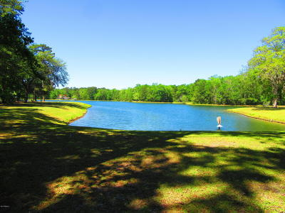 Seabrook Residential Lots & Land For Sale: 82 Tomotley Barony Drive
