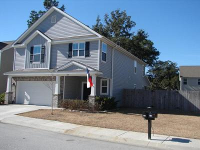 Beaufort County Single Family Home For Sale: 100 Glory Road