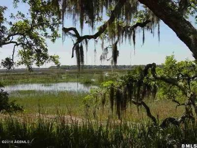 Beaufort County Residential Lots & Land For Sale: 85 Grande Oaks Way