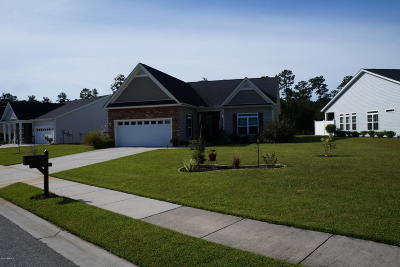 Ridgeland Single Family Home For Sale: 50 Providence Way