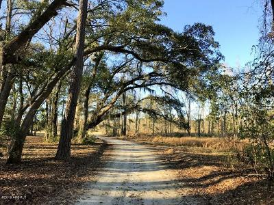 20 Huspa Creek Dr, Seabrook, SC, 29940, Northern Beaufort County Home For Sale