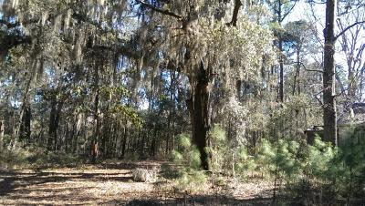 Beaufort, Beaufort Sc, Beaufot, Beufort Residential Lots & Land For Sale: 18 Billy Hill Road