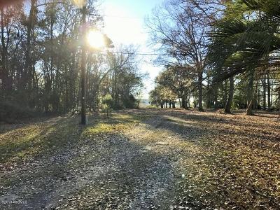 20 Huspa Creek Drive, Seabrook, 29940 Photo 2