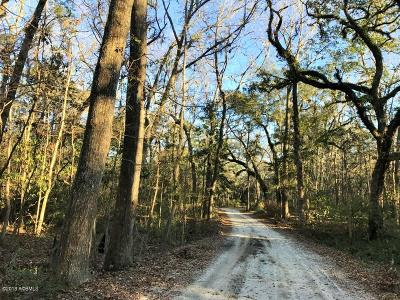 20 Huspa Creek Drive, Seabrook, 29940 Photo 7