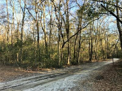 20 Huspa Creek Drive, Seabrook, 29940 Photo 8