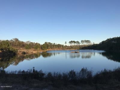 Ridgeland Residential Lots & Land For Sale: Frontage Road