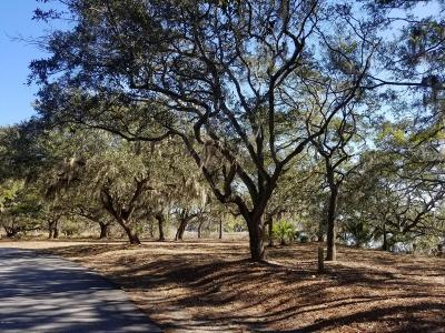 Beaufort, Beaufort Sc, Beaufot, Beufort Residential Lots & Land For Sale: 2 Cattail Court