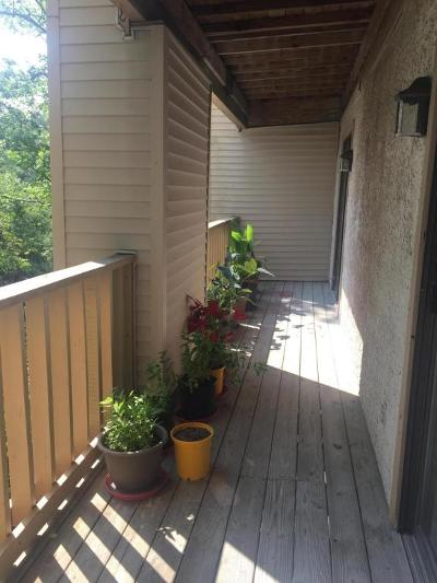 Beaufort County Condo/Townhouse For Sale: 155 Dillon Road #2412