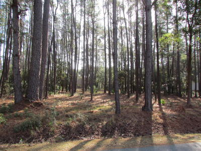 Beaufort County Residential Lots & Land For Sale: 255 Pleasant Point Drive