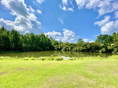 Distant Island Residential Lots & Land For Sale: 815 Distant Island Drive
