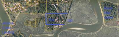 54 Bud Miley, St. Helena Island, SC, 29920, St Helena Island Home For Sale