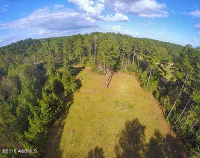 Ridgeland Residential Lots & Land Under Contract - Take Backup: 1205 Honey Hill Circle