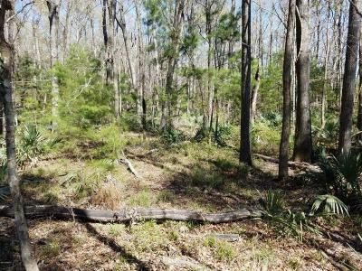 Yemassee Residential Lots & Land For Sale: 223 Trask Parkway
