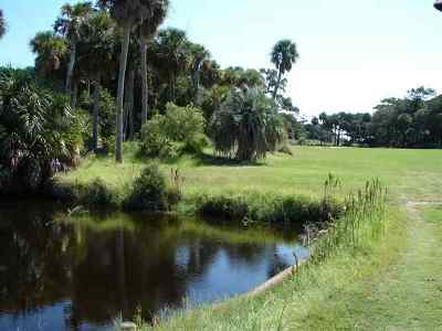 Fripp Island Residential Lots & Land For Sale: 515 Lookout Lane