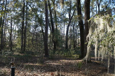 Beaufort, Beaufort Sc, Beaufot, Beufort Residential Lots & Land For Sale: 408 Battery Chase